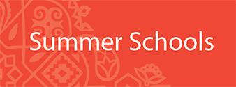 Summer School Button