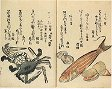 Ehon mushi no erami, 1788